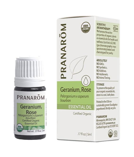 Geranio (Pelargonium x Asperum Bourbon)