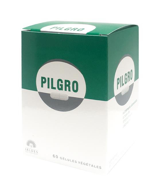 PILGRO